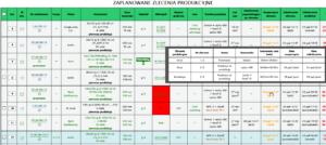 Printegy MIS - Widok planowania produkcji-szczegoly zlecen